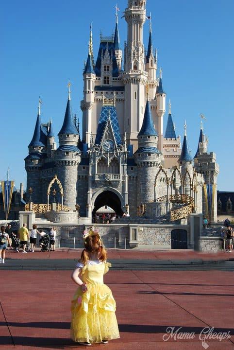 Lily Disney Castle