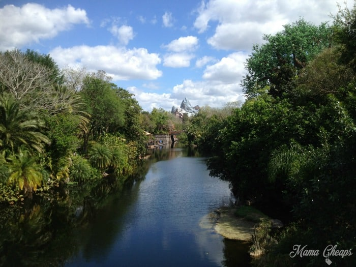 River with Expedition Everest