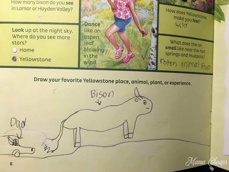 Yellowstone Jr Ranger Booklet