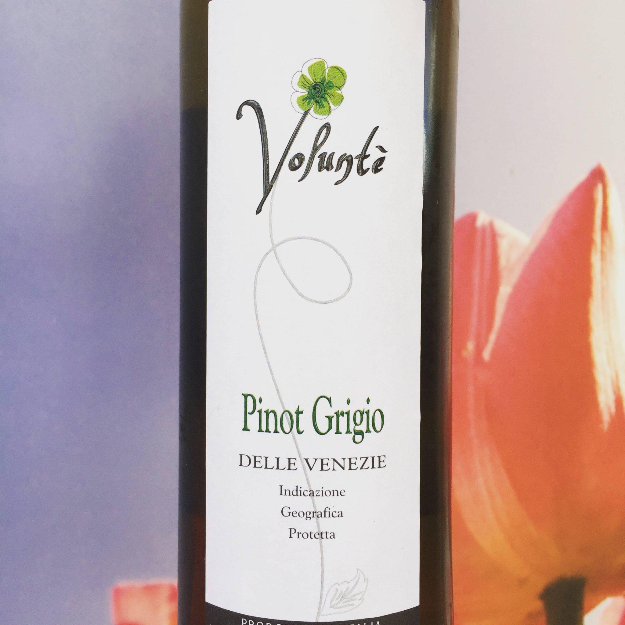Volunté Pinot Grigio, Review
