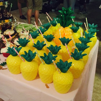 Pineapple Party (10)