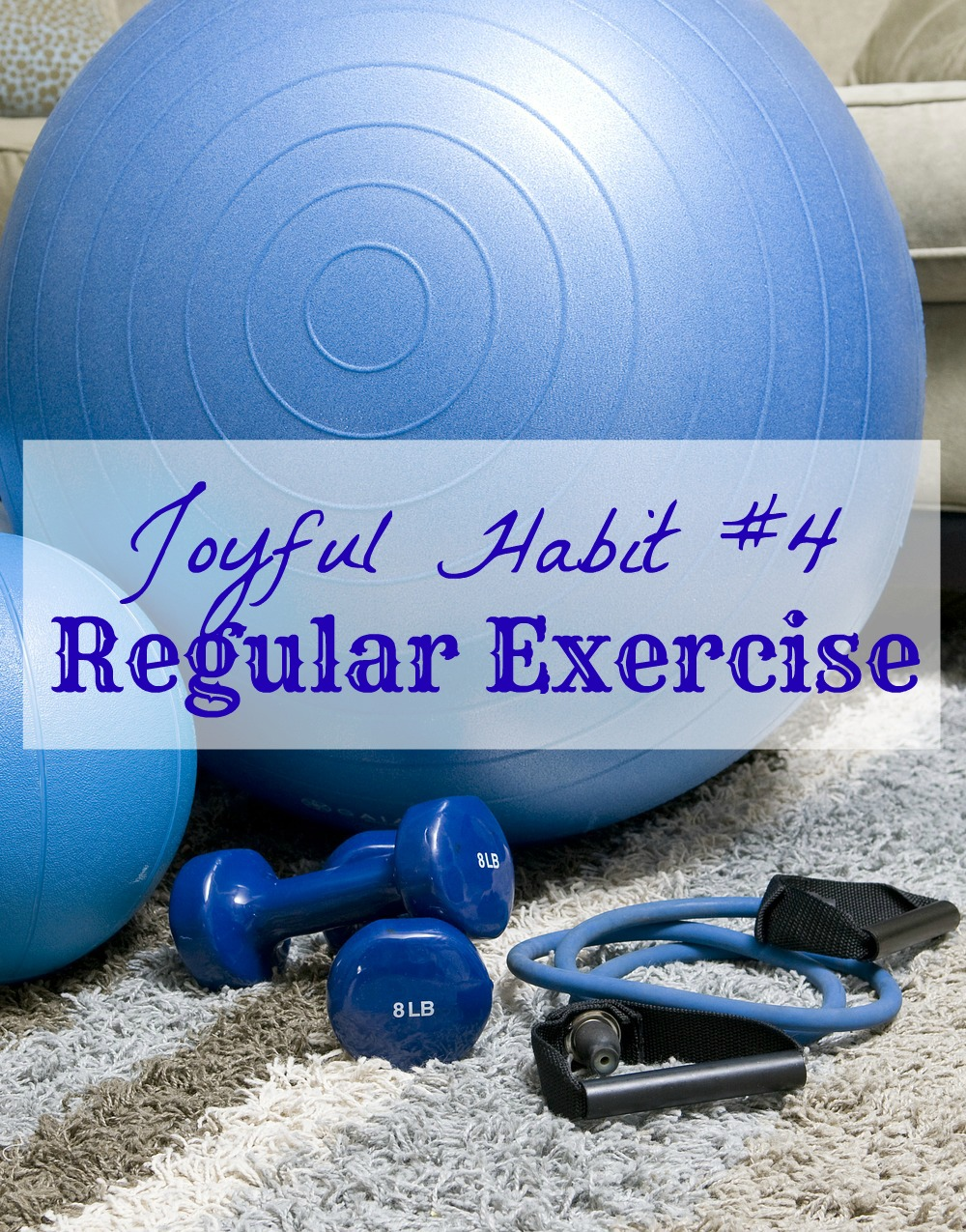 Joyful Habit #4 - Benefits Of Regular Exercise