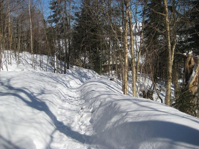 Voyage au Québec_Février 2008 160