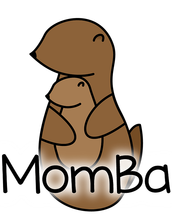 Babycarrier Alert: The Momba Modular Carrier