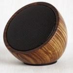 natural-speaker