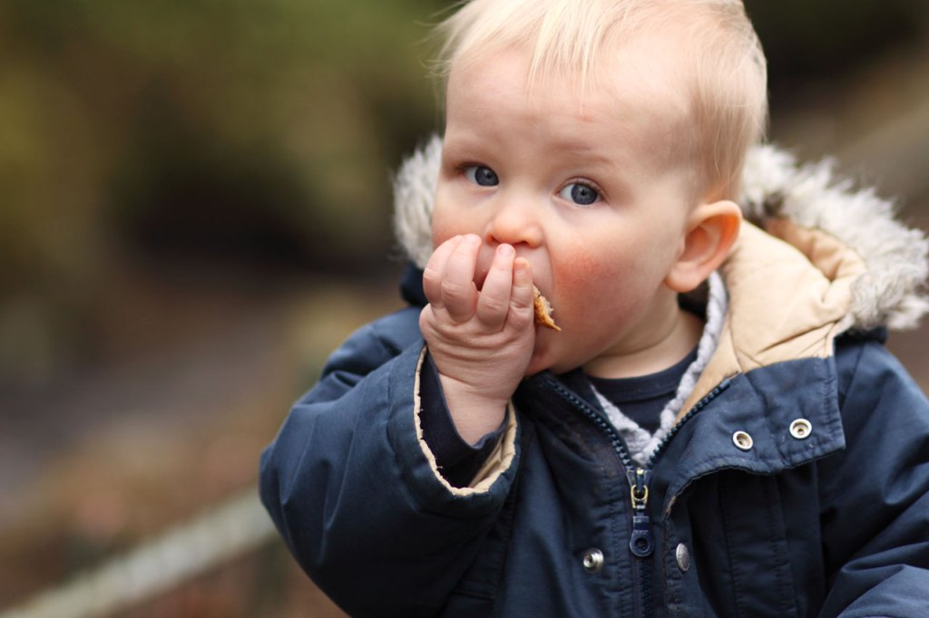 Feeding Your Child a Clean and Healthy Diet