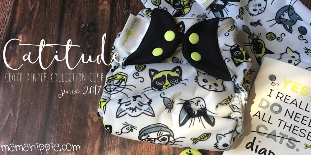 Ever wanted to get limited edition cloth diapers delivered right to your door? Cotton Babies now has a subscription service so you can do just that!