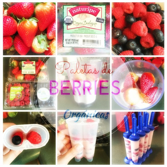 Paletas de Berries Orgánicas para este Verano.