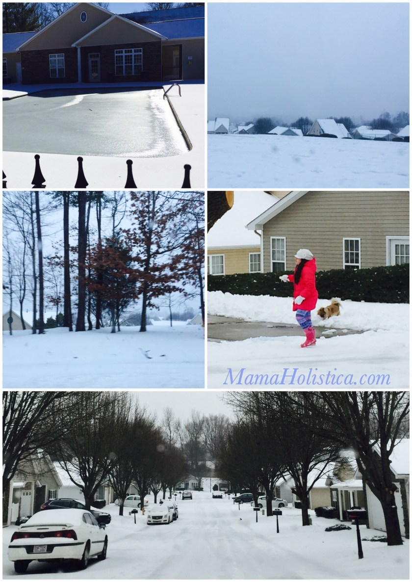 Miércoles Mudo/Wordless Wednesday: Snow Time #MM