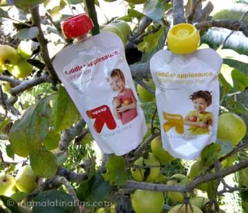 Banana, Mango, Kiwi Applesauce