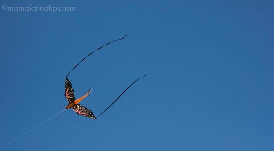 dragon kite-mamalatinatips.com