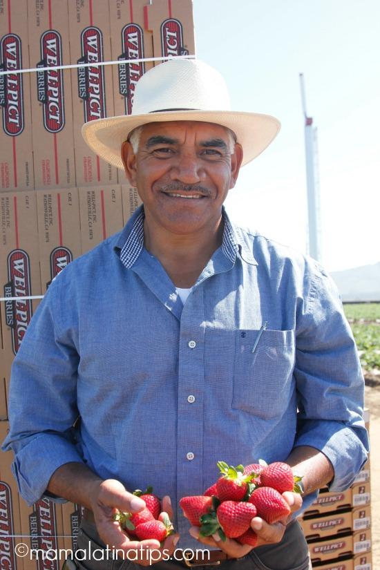 Juan Hernandez, Mandalay Berry Farms, Oxnard CA - mamalatinatips.com