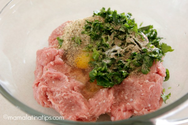 Ground turkey meat with herbs and spices by mamalatinatips.com
