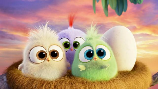 Angry Birds chicks