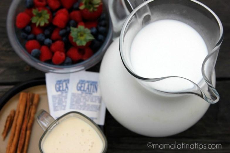 Ingredientes para hacer gelatina de leche - mamalatinatips.com