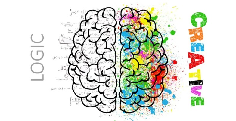 graphic with a brain divided in two, one side says create, the other says logic