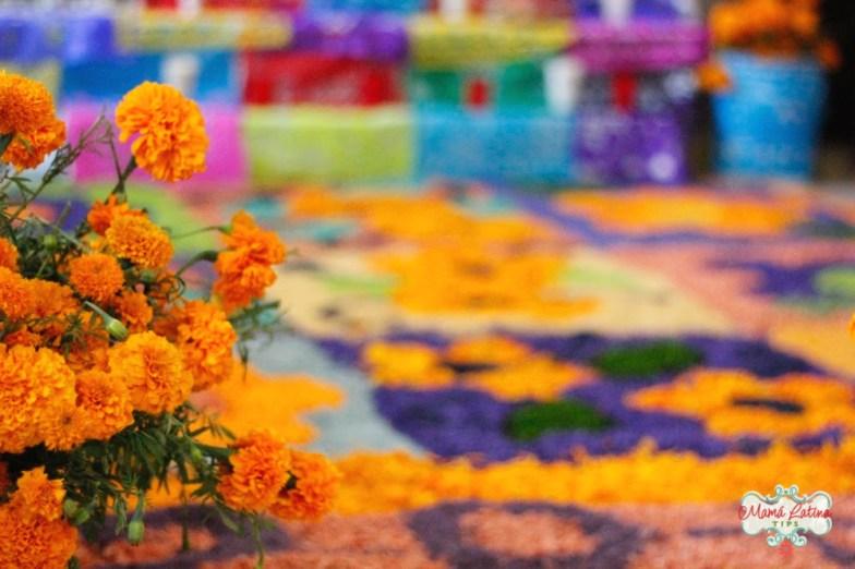 flores de cempazuchitl sobre aserrín en altar de muertos