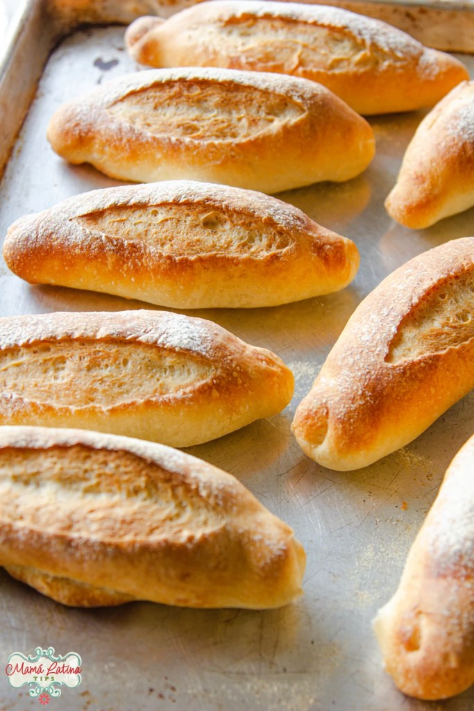 Mexican dinner rolls