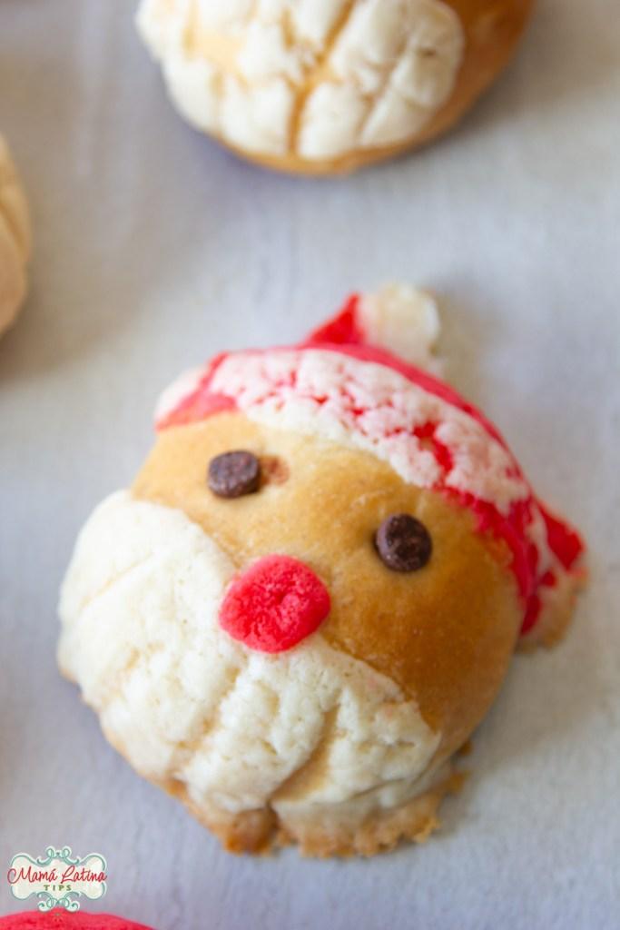 Conchas de Santa Claus