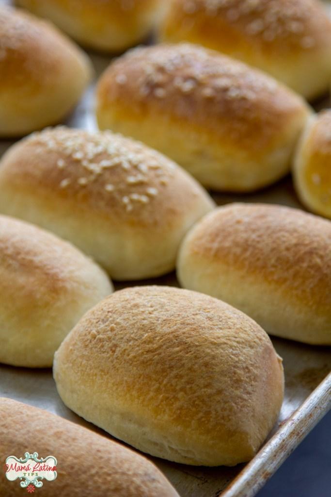 Fresh baked Parkerhouse style rolls