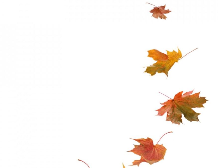Lang leve de herfst!