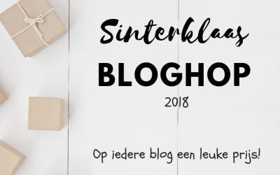Pie Face; een hilarisch gezelschapsspel met slagroom   #SinterklaasBloghop2018