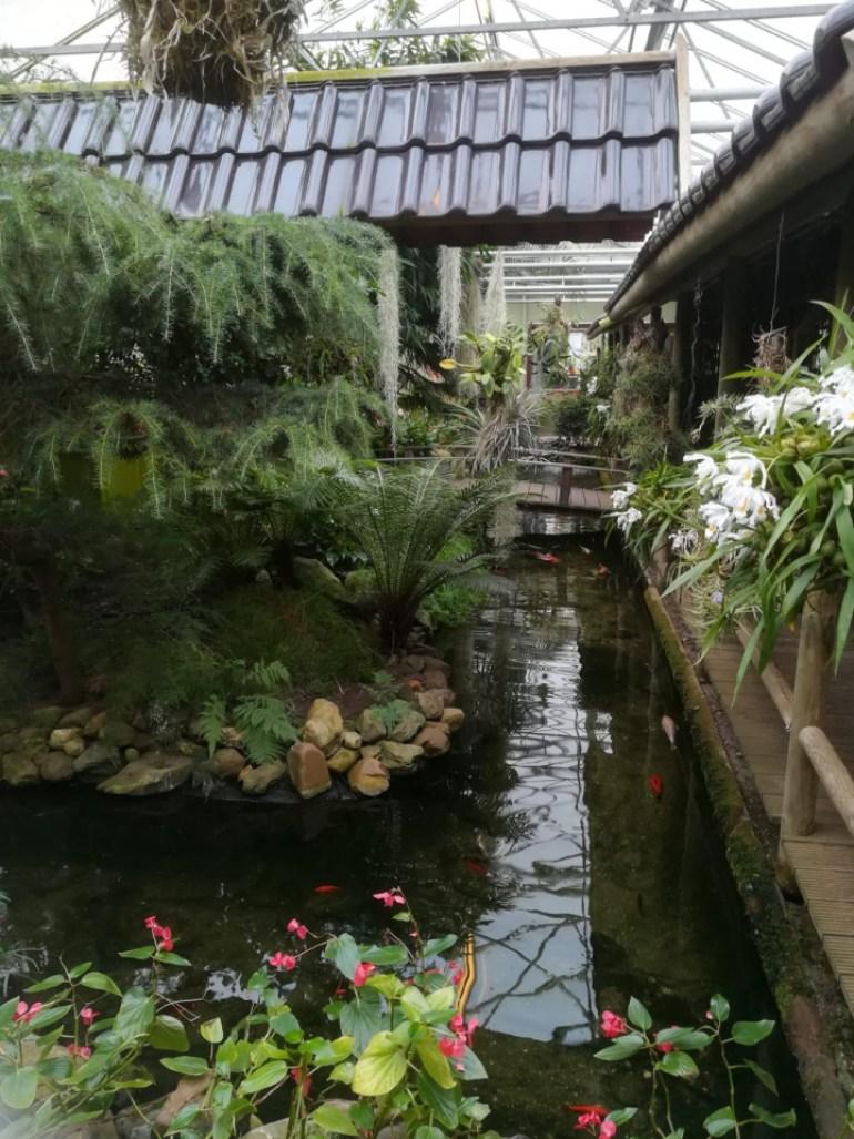 op bezoek bij orchideeën hoeve als uitje voor voorjaarsvakantie