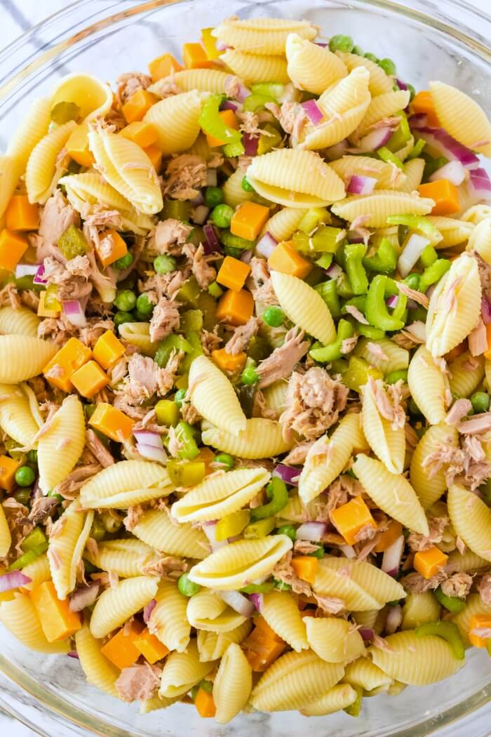 TUNA PASTA SALAD WITHOUT DRESSING
