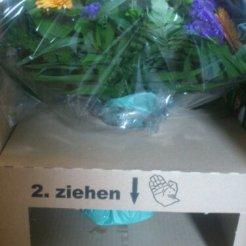 gut beschriftet, wie man seinen Blumenstrauß sicher & heile ausgepackt bekommt