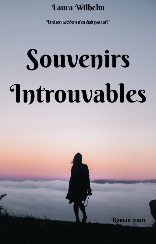 """Chronique """"Souvenirs introuvables"""""""