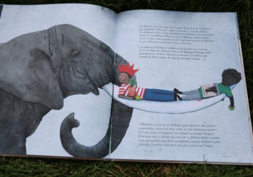 Album documentaire sur les éléphants