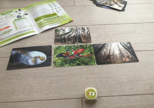 Bioviva planète : Jungles et Forêts !