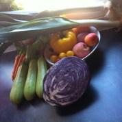 Retour de marché : 7 idées «salades-plaisir» pour la semaine