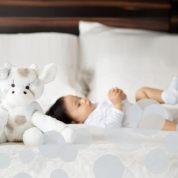 Little Giraffe: le grand luxe pour tout-petits