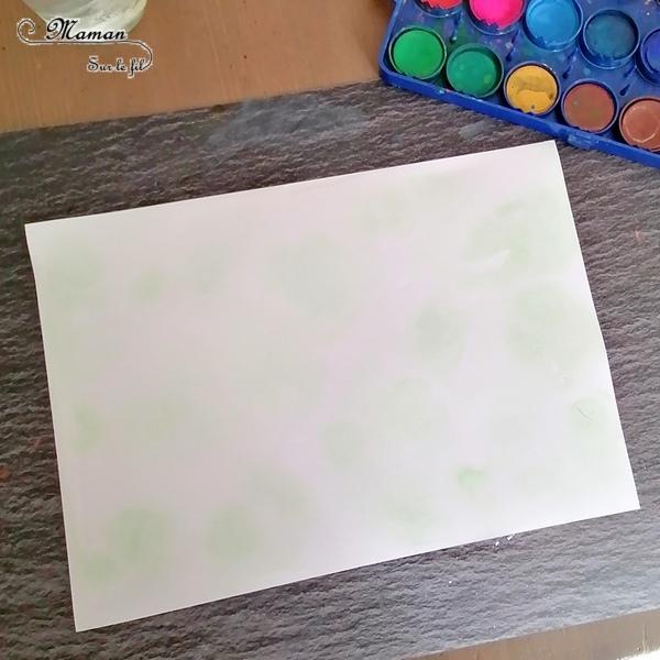 Activité créative enfants - Peindre des champs de fleurs et de coquelicots avec une technique type aquarelle - Eau + gouache en pastilles - découverte d'une technique de peinture - Dessin pour tiges, feuilles et coeurs des coquelicots, graphisme - Motricité fine - Créativité - Printemps - arts visuels maternelle et Cycle 1 et 2 - mslf
