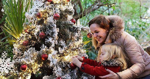 bon plan séjours et surprises Noël