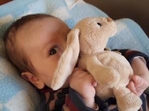 Ticoeur a attrapé le lapin !