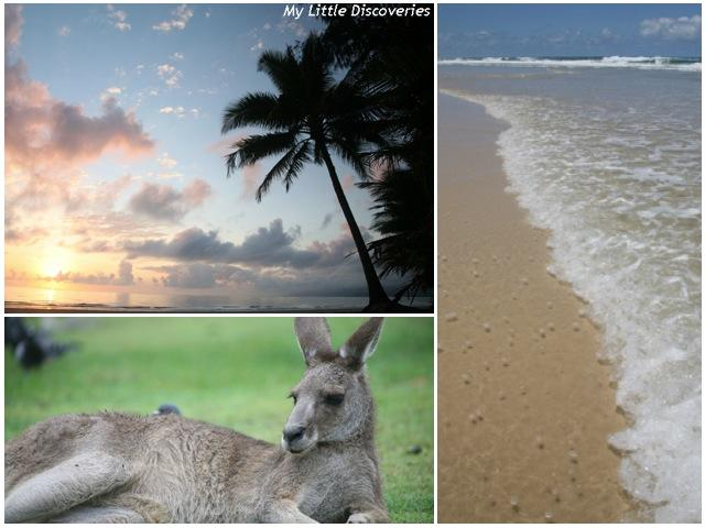 Interview voyage #5 : l'Australie