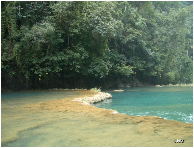 semuc_champey_jungle
