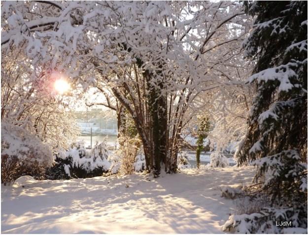soleil_neige
