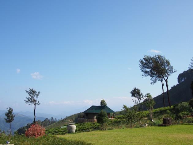 Nuit au cœur d'une plantation de thé au Madulkelle Tea & Eco Lodge