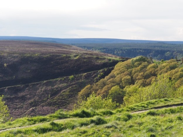 visiter le Yorkshire