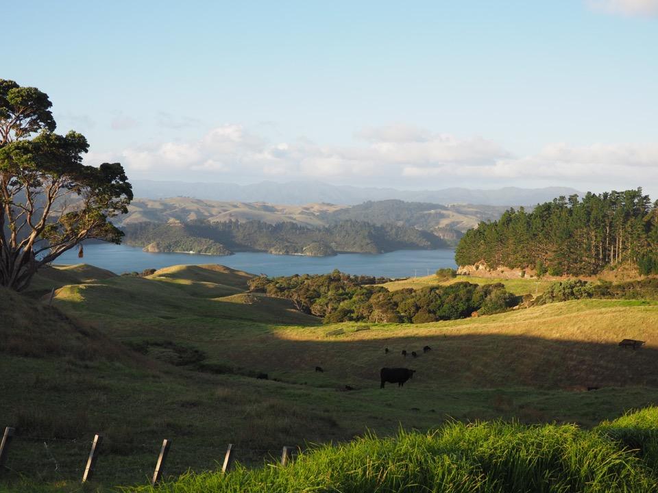 Nouvelle-Zélande île du Nord