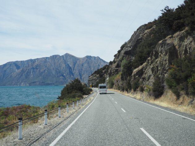 guide survie pays des Kiwis
