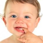 bebini zubici