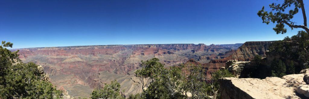 Grand Canyon Social Media