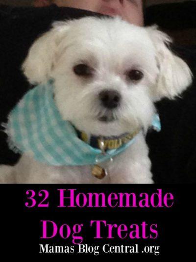32 homemade dog treats