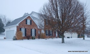 Snow Storm 2010 front of house