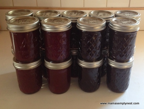 Blackberry and cranberry jam jan 2014
