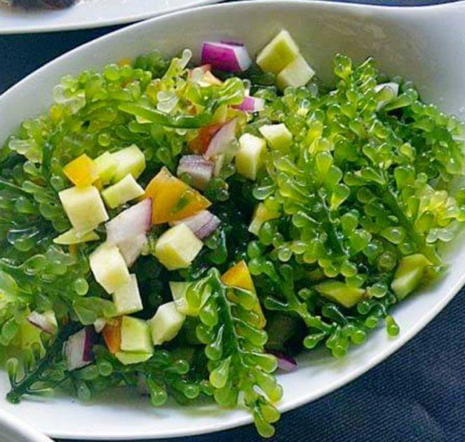 Lato Salad recipe with green mangoes, Ensaladang Lato (Ar-arusip),  ar-arosep, seaweeds salad,